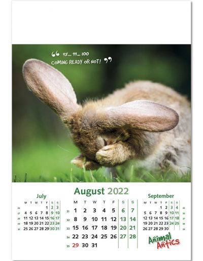 animal-antics-wall-calendar-august-2022.jpg