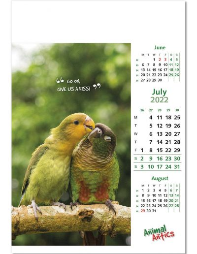 animal-antics-wall-calendar-july-2022.jpg