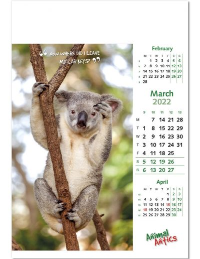 animal-antics-wall-calendar-march-2022.jpg