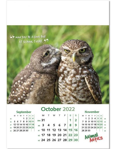 animal-antics-wall-calendar-october-2022.jpg