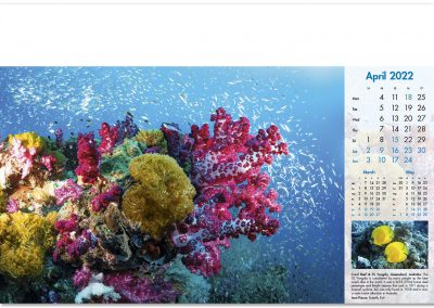 blue-planet-wall-calendar-april-2022.jpg