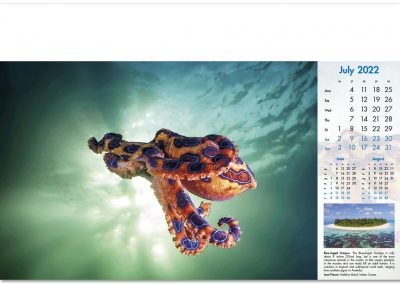 blue-planet-wall-calendar-july-2022.jpg